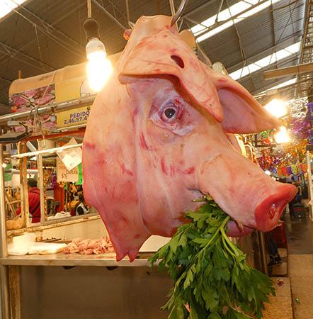 Pig's head in market, Puebla, Mexico