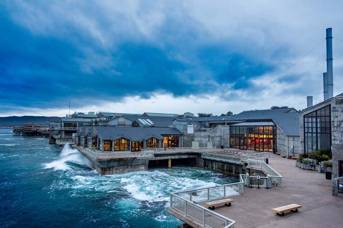 The Monterey Bay Aquarium's Great Tide Pool during King Tides