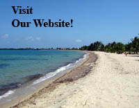 VisitOurWebsite5