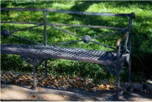 A bench in Jackson Square, maybe mine.