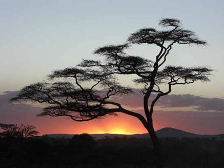Dazzling African sunset
