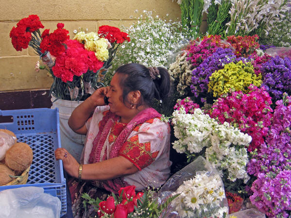 Stunning and colorful flowers of Guatemala, native Maya woman on her cell phone.