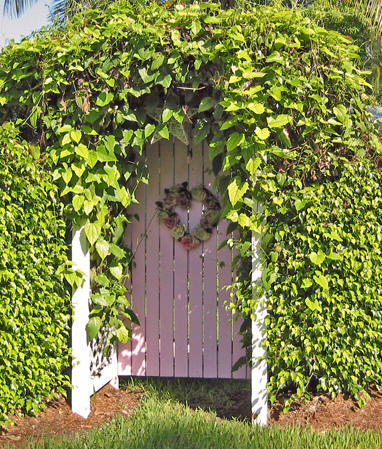 Beautiful gate to home with wreath
