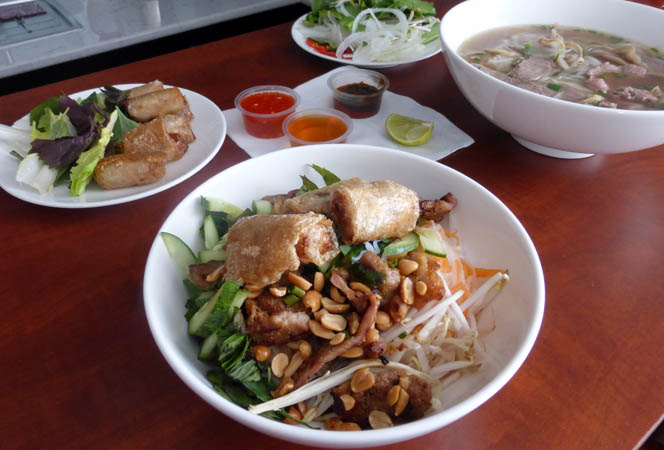 Vietnamese spring rolls and a bowl of Pho
