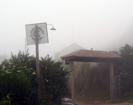 TYPICAL  DAY IN THE CLOUD FOREST
